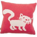 Koddaver  - Kitten